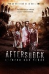 "Affiche du film ""Aftershock : L'Enfer sur terre"""